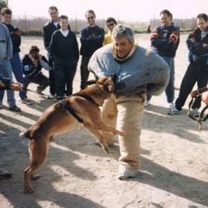 Curso de técnicas especiales de defensa
