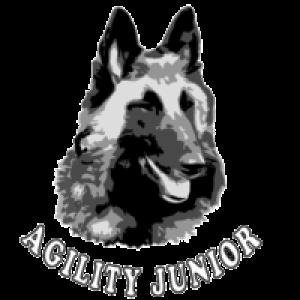 Club agility Junior